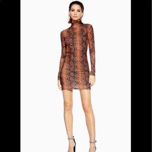 TOPSHOP/ snake funnel turtleneck mesh mini dress